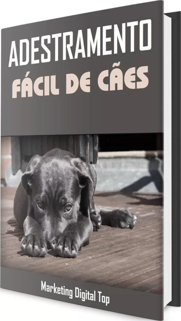 Produtos Digitais PLR em Português | Revenda E-books PLR 2020 Raimundo Oliveira
