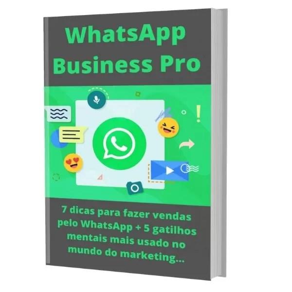 e-book plr WhatsApp business pro - Raimundo Oliveira