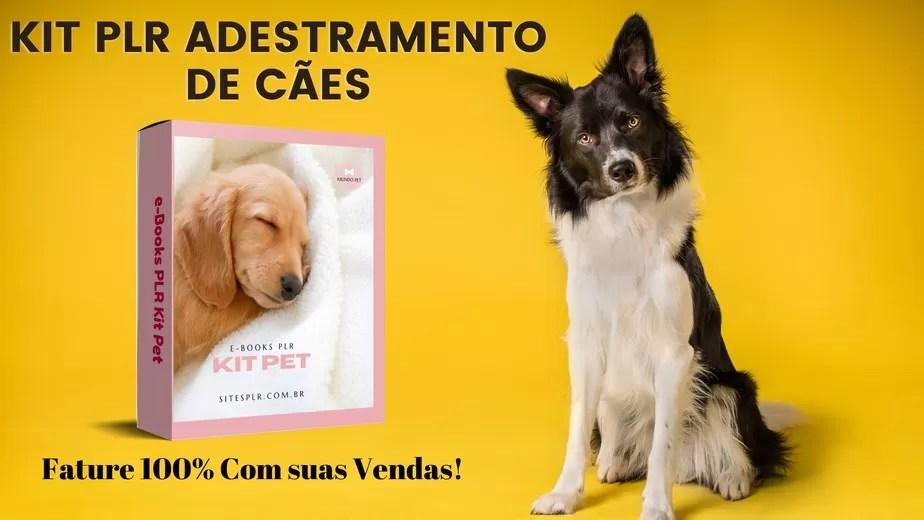 PLR Adestramento De Cães