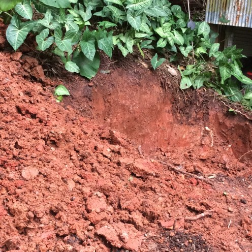 One of my WWOOFing tasks was to dig a 5 foot hole in the hard red-clay soil. We filled it with roof debris (in preparation for installing solar panels) and later, will build an earth-bag goat shed atop.