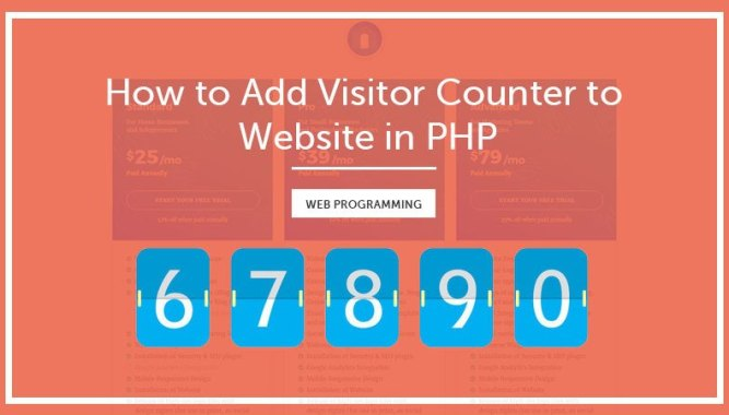 How to Add Visitor Counter to Website in PHP