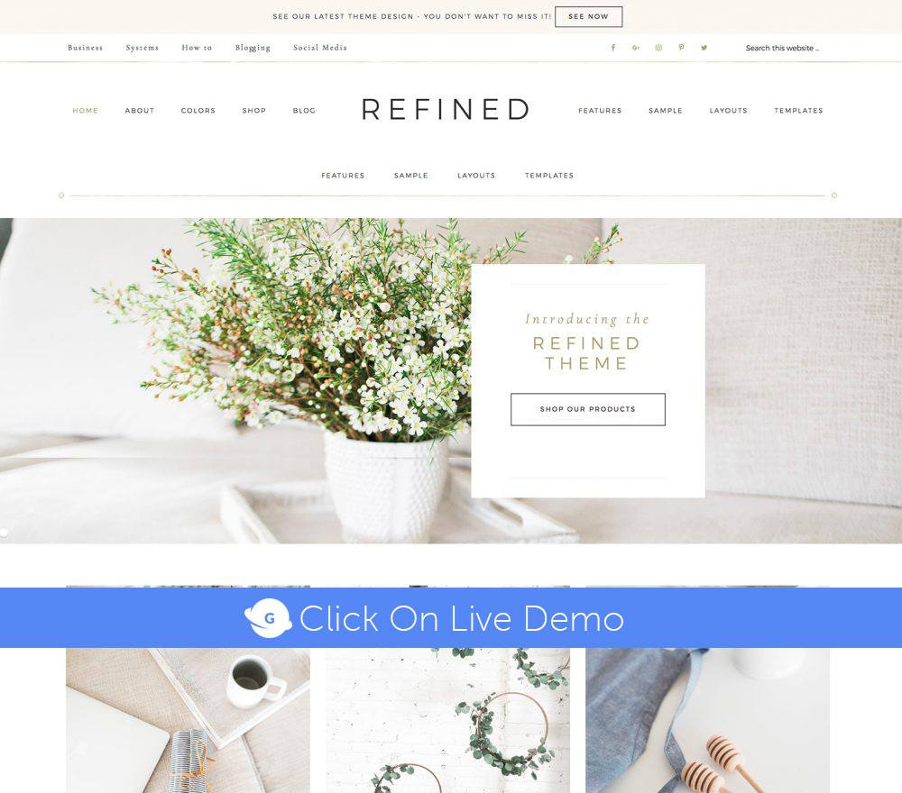 Refined Pro Theme Review