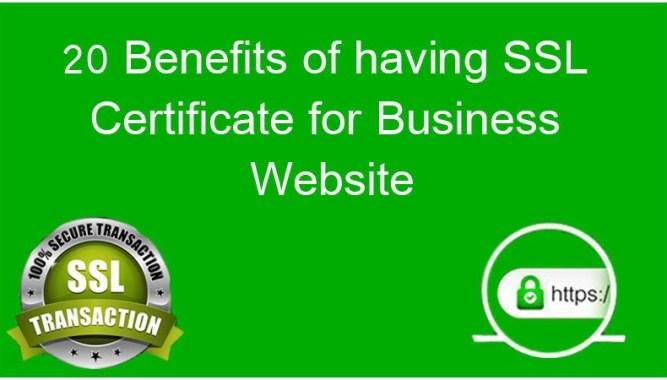 SSL Certificate for Business Website