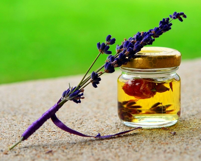 Essential Oils To Get Rid Of Various Types Of Bugs