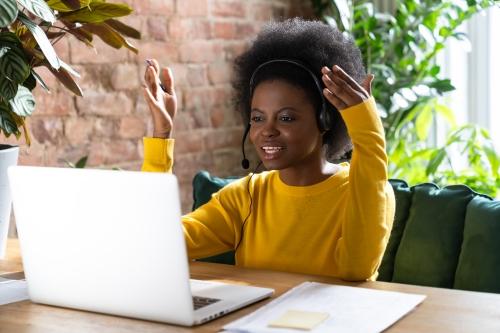Successful Online Meetings (SOM)