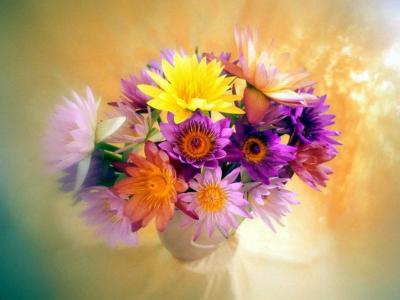 Флоротерапия: лечение с помощью цветов 886