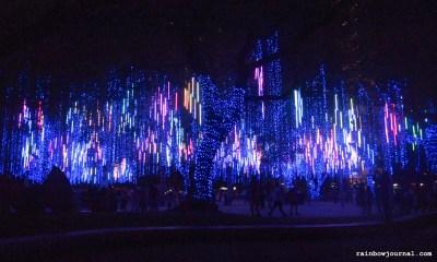 2014 Ayala Lights and Sounds Show
