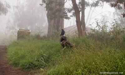 Trek to Kawah Ijen in Indonesia