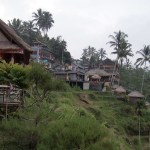 Our tour is capped off with a visit to some of Bali's many rice terraces.