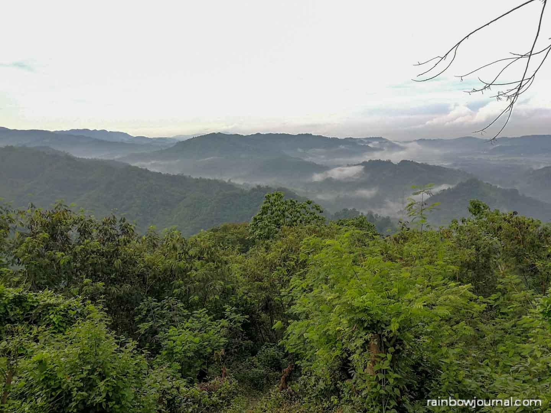 Mount Purro Nature Reserve - Mt Malvar hike