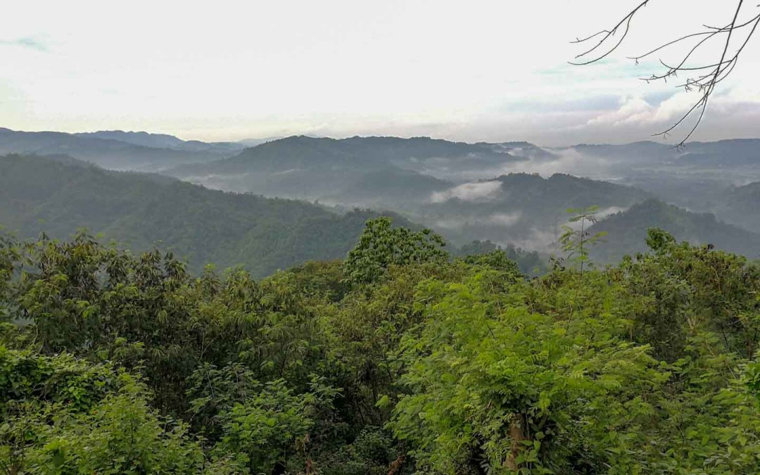 Trekking Mount Malvar: Mud, Mosquitoes and A Sea, erm… Stream of Clouds