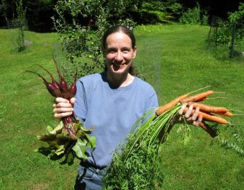 First picking of carrots and beets
