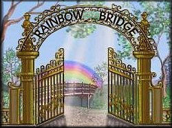 The Rainbows Bridge Poem