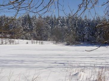 Schneewüste Narturschutzgebiet Meissner, Hessen
