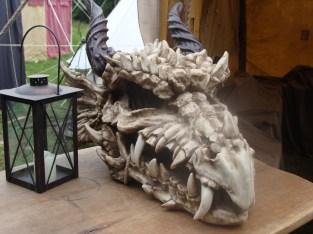 Spektakulärer Fund, ein Drachenschädel