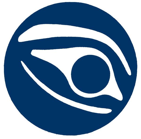 raincoaster media logo