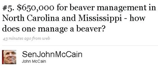 Beaver Shots: how to eat beaver (2/6)