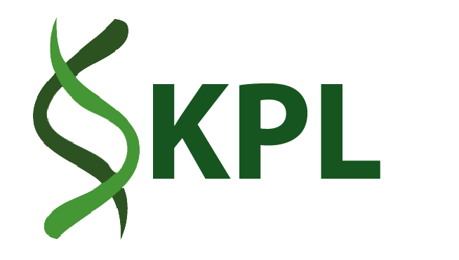 KPL Marketing Promotion Design