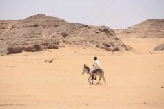 A man on a donkey in the desert near Wadi Halfa