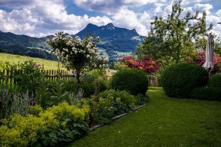 Gartenbauverein-1005888