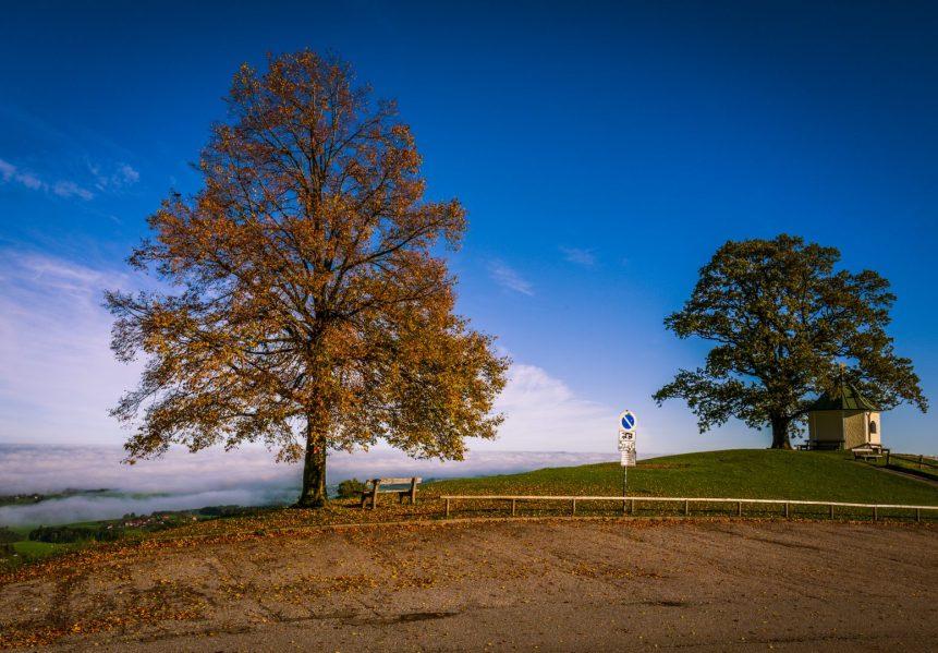 Herbst-1130633