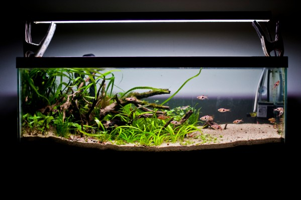 20L Freshwater Planted Tank