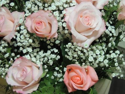 Rosas, a perfeição da natureza expressada em beleza, perfume e lindas cores.