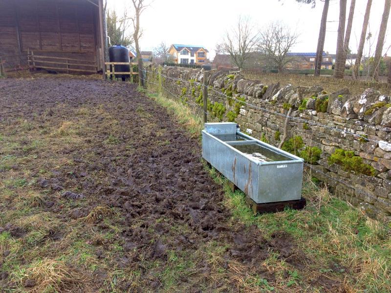Above Ground Garden Watering Systems