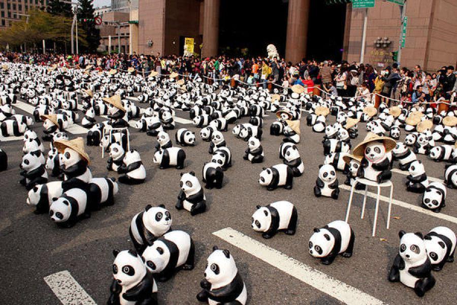 台北紙熊貓展 600 Pandas on Tour 台北市政府廣場‧貓熊世界之旅