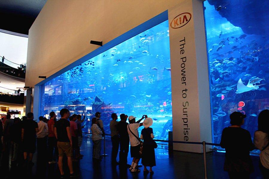 杜拜 Dubai   杜拜購物中心 Dubai Mall 世界最大 – 逛逛冰山一角