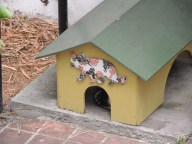 one of many cat houses