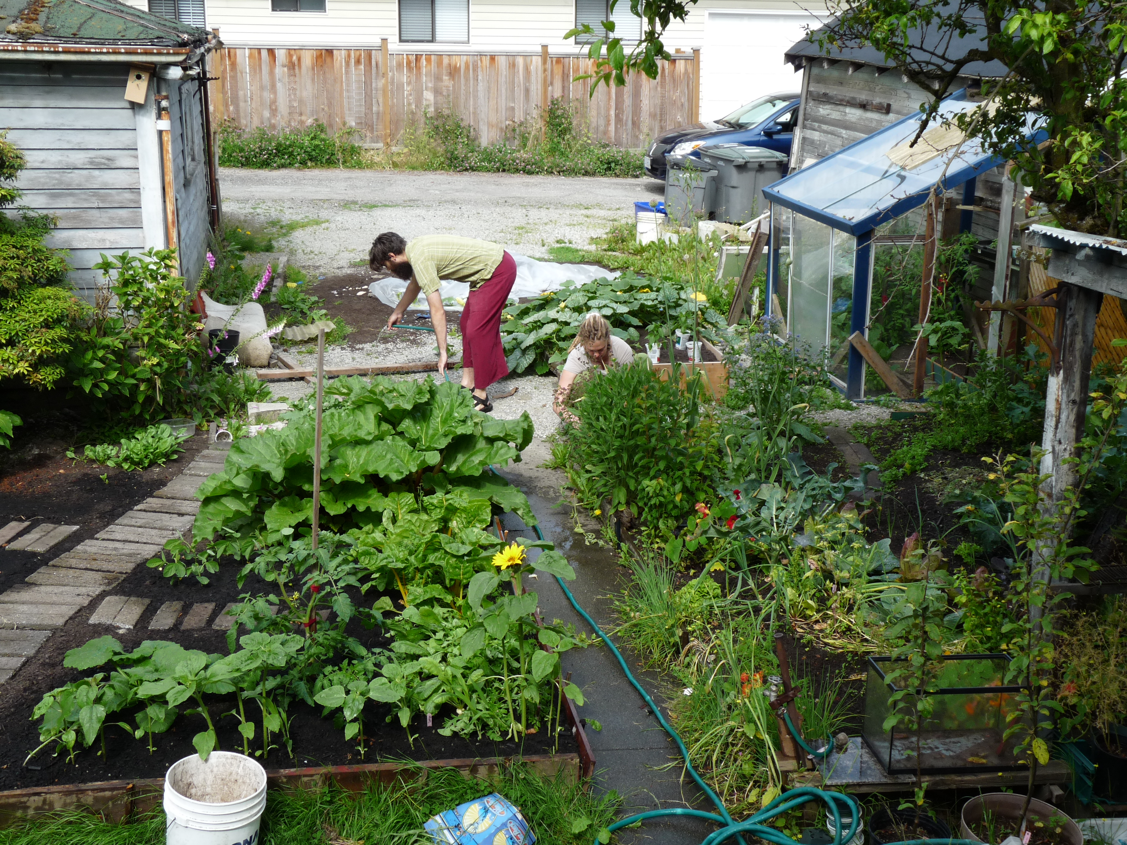 1000+ images about Permaculture backyard gardens! on ... on Backyard Permaculture Design id=69902
