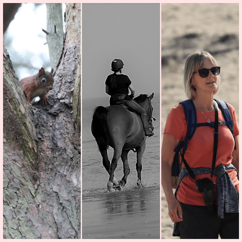 Formby – red squirrel walk