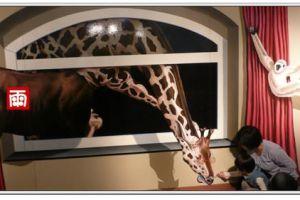 【親子看展】到駁二看奇幻不思議日本3D幻視藝術畫展