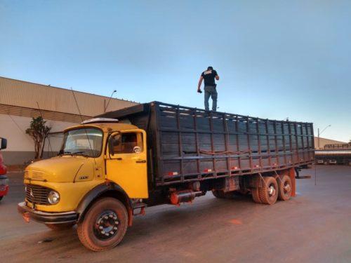 Polícia Civil recupera mais 33 cabeças de gado durante operação em Minas Gerais