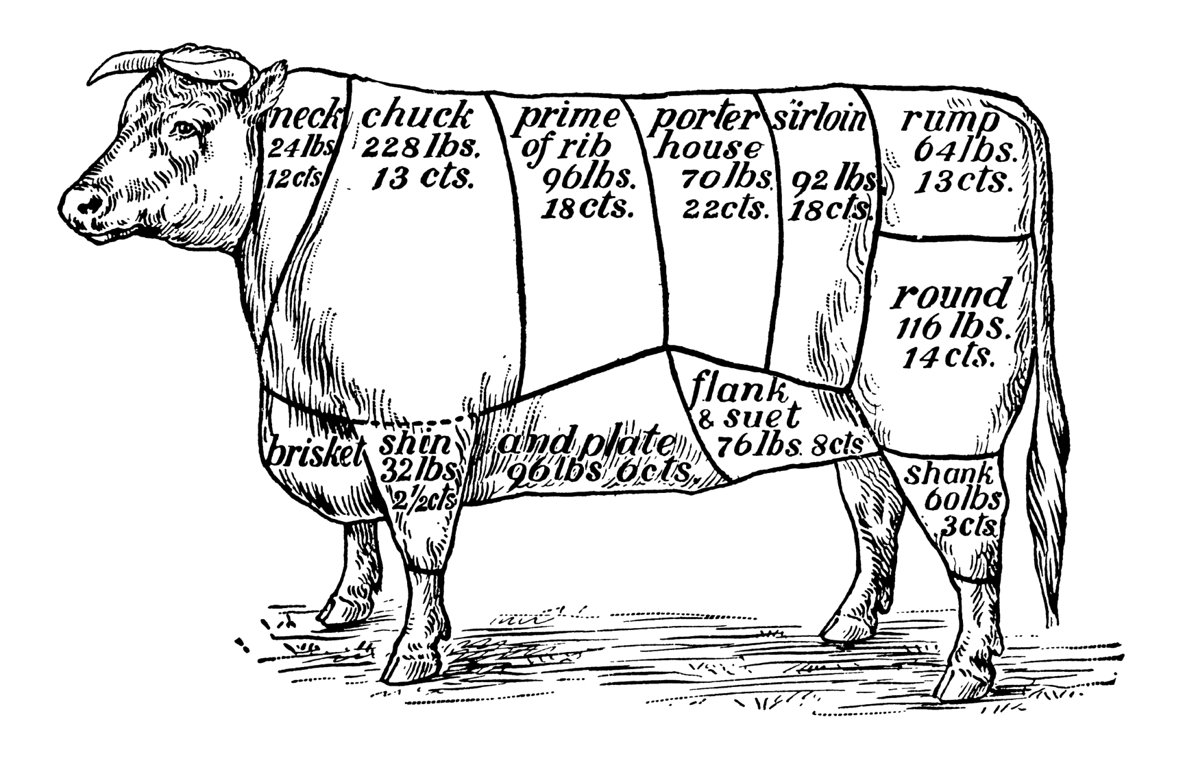 understanding-cuts-of-beef