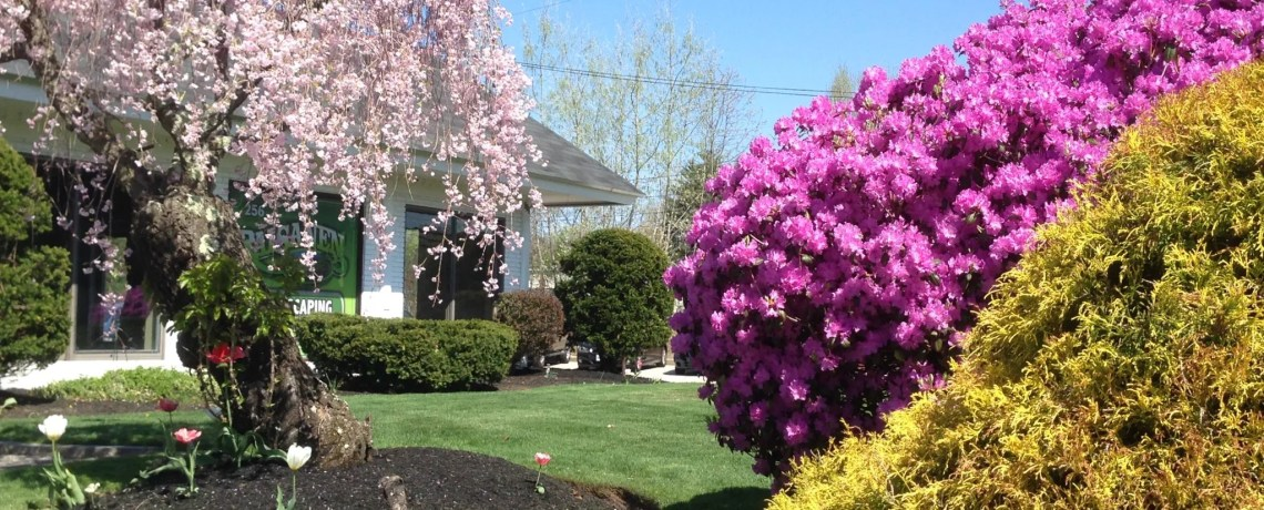 Your Full Service Landscaping Company
