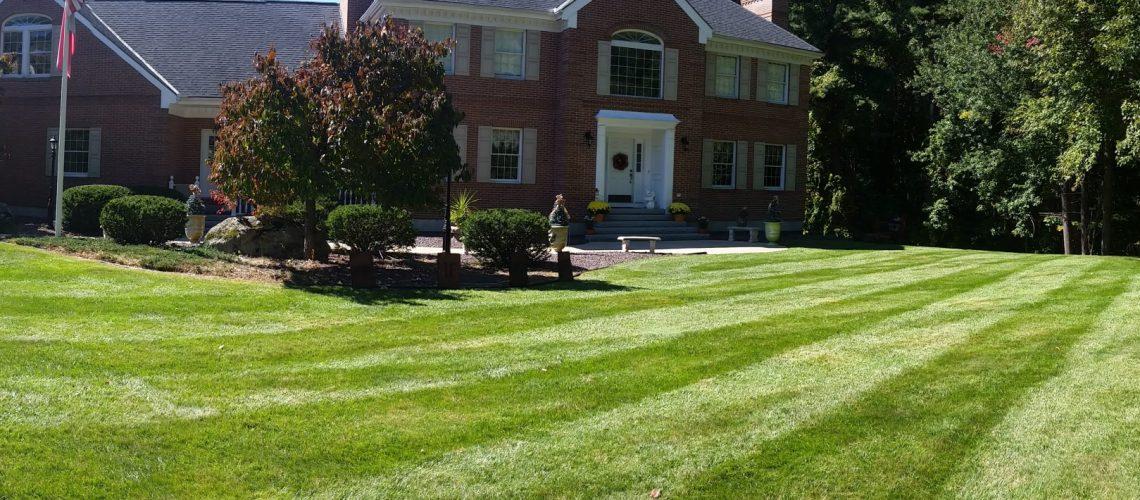 Nashua's premier lawn service