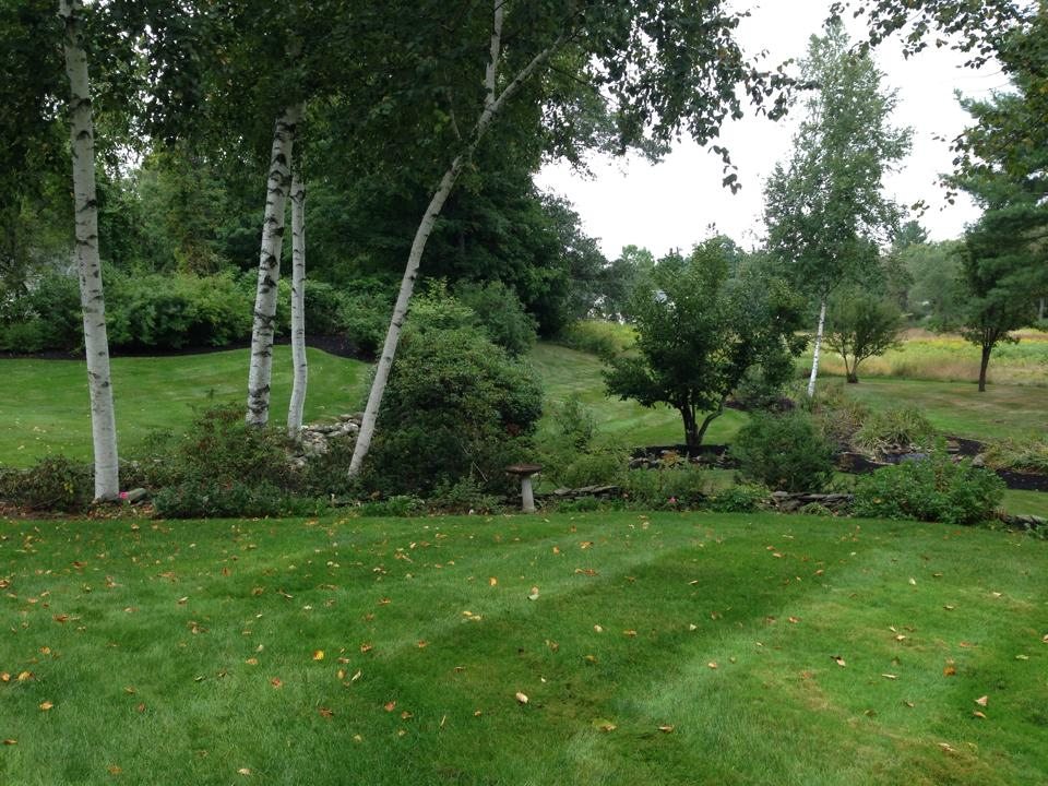 Lawn mowing in Amherst NH