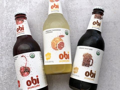 Obi Fermented Drinks by The Allergy Chef
