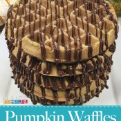 Gluten Free, Dairy Free Pumpkin Waffles