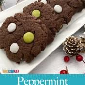 Gluten Free, Vegan, Chocolate Peppermint Cookies