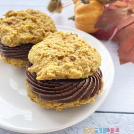 Gluten Free Vegan Carrot Oatmeal Cookies by The Allergy Chef