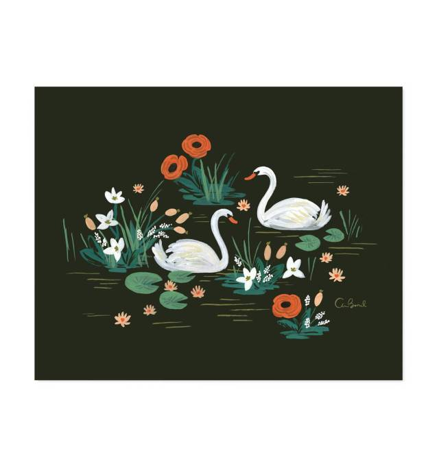 swan-illustrated-art-print-01