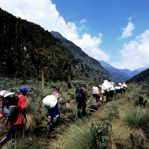 9-Day Mount Rwenzori Climbing Adventure