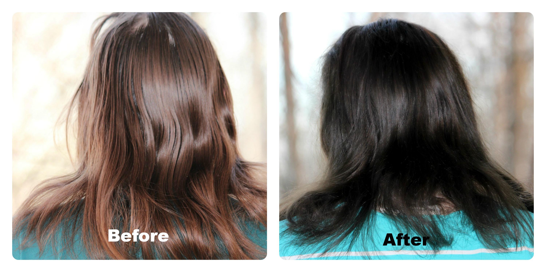Light Mountain Natural 100 Botanical Hair Color Indigo
