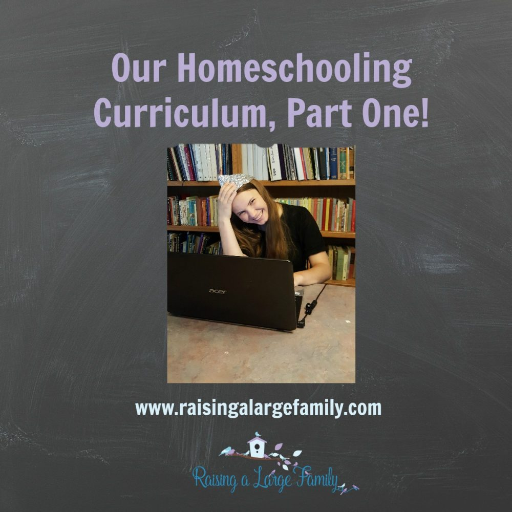 Our Homeschooling Curriculum  Part One   Raising a Large Family Our Homeschooling Curriculum  Part One