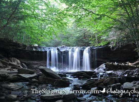 Ricketts Glen State Park - Oneida Falls - Falls Trail