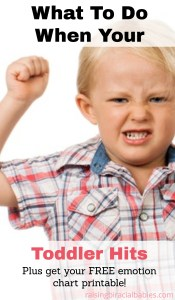 Toddler who hits | aggression in toddlers | how to handle a toddler who hits | toddler behavior | tips for toddlers who hit |
