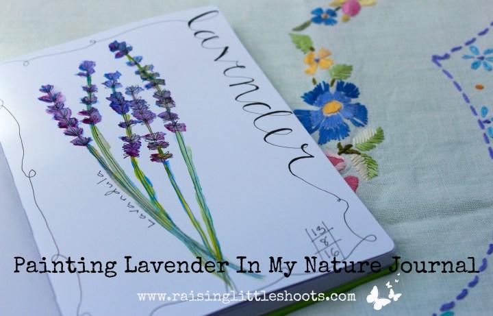 Lavender image.jpg
